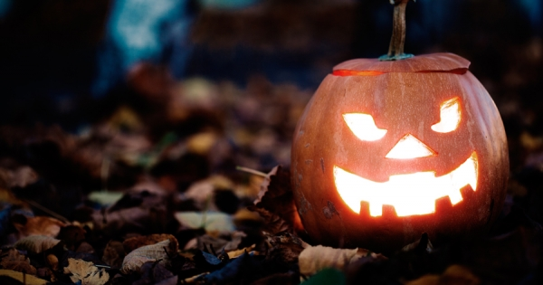 Fact or Myth? The Animals of Halloween
